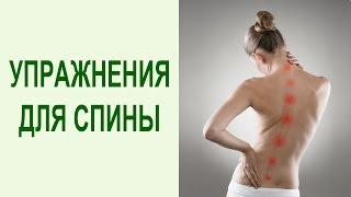 Полный комплекс упражнений ПИЛАТЕС для позвоночника и спины в домашних условиях. Yogalife
