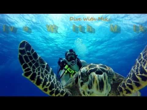 Why I dive Cozumel! GoPro Hero4 Black 4k