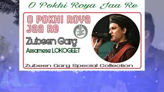O Pokhi Roya Jaa Re    Zubeen Garg    LOKOGEET    Zubeen Garg Special Collection