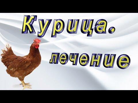 #Курятник и куры. Лечу у курицы глаз. #