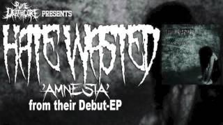 Hate Wasted - Amnesia (New Single 2013) [HQ]