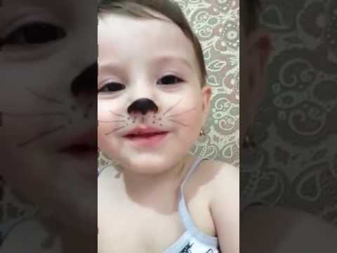 Cute Baby Cat Whatsapp Funny Video 2017
