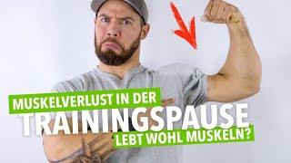 🤔 Schrumpfen die Muskeln in der Trainingspause? | Muskelmacher 🏋️♂️