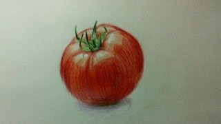 How to Draw a tomato? watercolor pencils.