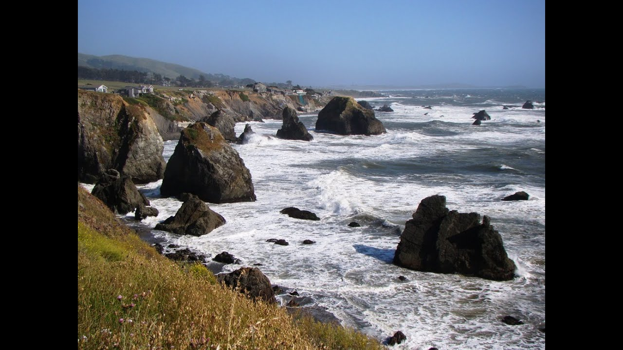 bodega bay personals Bodega bay beach home 158 likes 11 talking about this 239 were here absolutely stunning white water pacific ocean views from the kitchen, living.