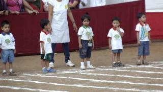 Full Race : Tree house Annual Sports Day