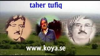 Koya / Taher Tufiq / Wtm Ae Kch