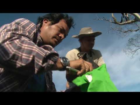 Our late friend, Luis Fernando Diaz Chavez (1988 - 2020)