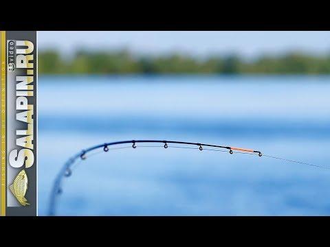 Ловля на фидер: подготовка к рыбалке, шаг за шагом [salapinru]