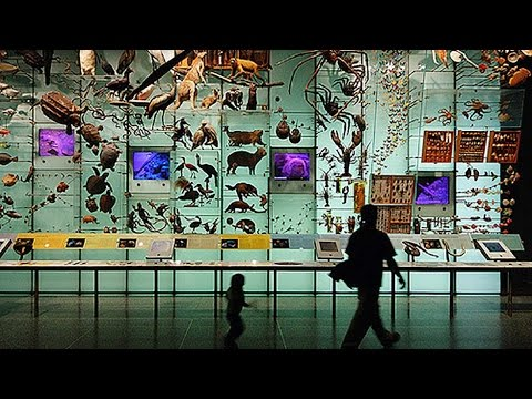 WGBH IdeaLab: Biodiversity - News From Nature