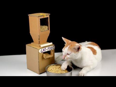 Diy Tom Cat Food Dispenser From Cardboard at Home [ Mr H2 ]