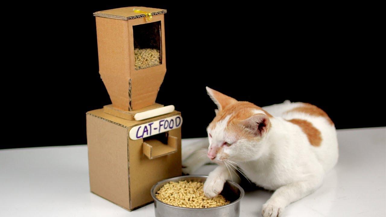 Cat Food Can Dispenser Diy