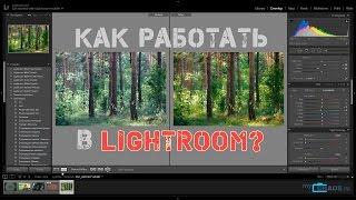 Как работать в Lightroom? Основы и примеры обработки фотографий