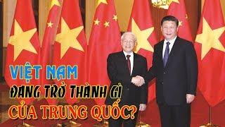 Việt Nam đang trở thành gì của Trung Quốc?