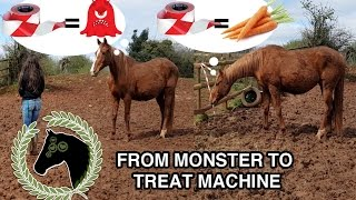 Help your horse deal with scary things