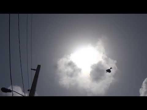 el eclipse solar en fajardo puerto rico 8 21 2017