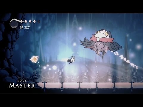 Hollow Knight Soul Master