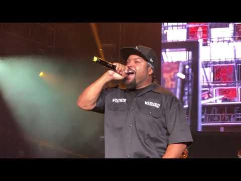 Ice Cube  Check Yo Self