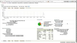 Oracle Performance Tuning - Oracle Enterprise Manager - Understanding Statistics
