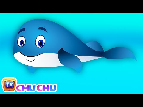 Thumbnail: Blue Whale Nursery Rhyme | ChuChuTV Sea World | Animal Songs & Nursery Rhymes For Children