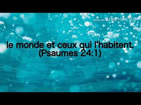 Tout Se Pou Ou - James Jessey Joseph feat. Bethanie Lafontant (Lyrics video)(Official Audio)