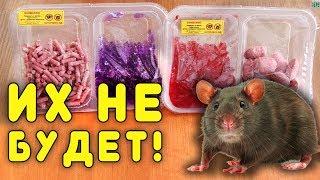 Простой способ избавиться от крыс и мышей на даче!