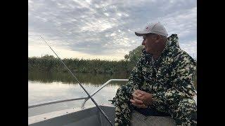 Рыбалка на жмых 12 сентября в Дельте Волги. Ловим сазана за 2 часа 12 шт.