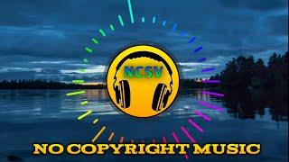Electronomia - Sky High Music    NCSV - No Copyright Sound Videos