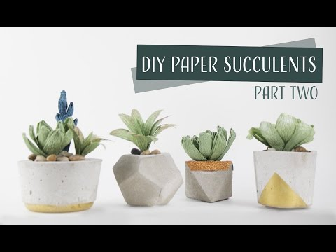 DIY Paper Crepe Succulents Part 2 - Collab Carte Fini  / Suculentas de Papel