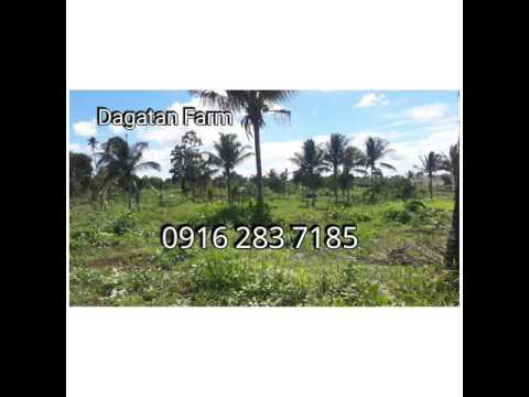 Farm Lot For Sale in Amadeo Cavite near Tagaytay Call 0916 283 7185