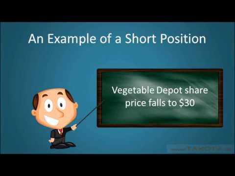 Long vs. Short Positions Explained