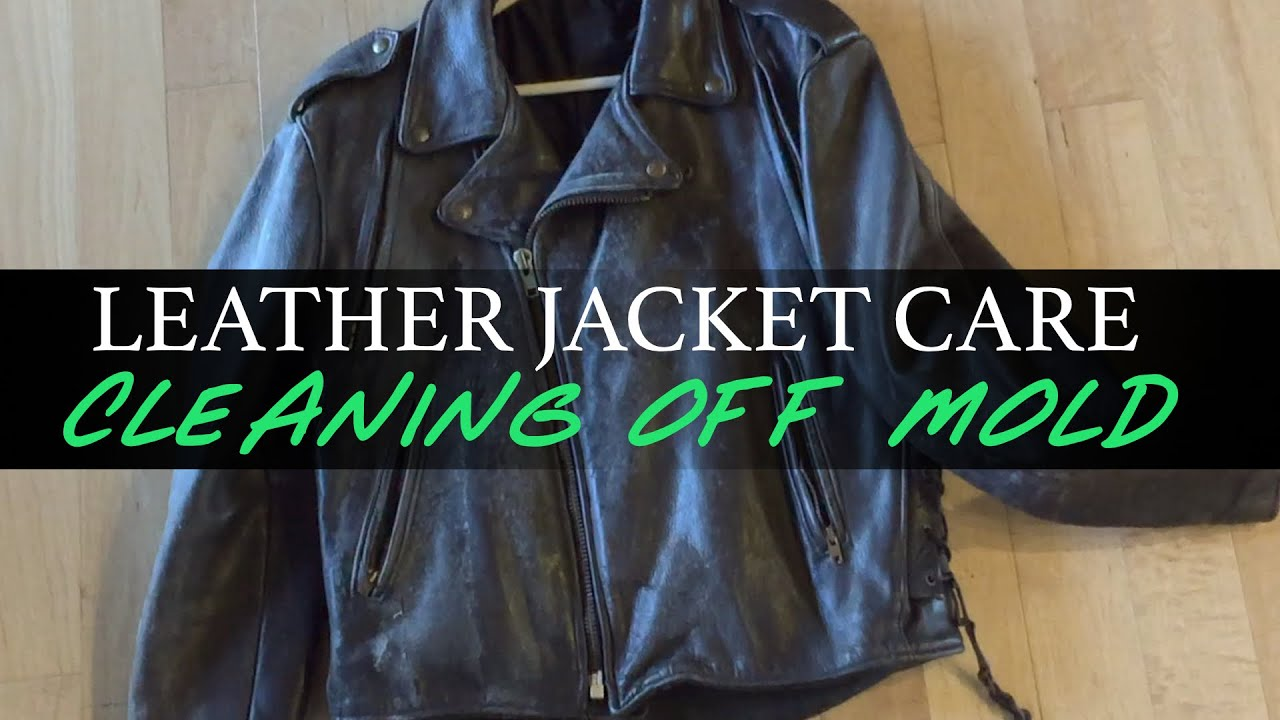 Leather Jacket Care: Cleaning Off Mold   YouTube