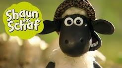 Shaun als Farmer | Shaun das Schaf | Staffel 1 [Ganze Folge]