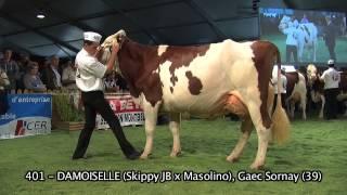 Concours National Montbéliarde 2013 : Meilleure Mamelle Adulte et Championne Adulte