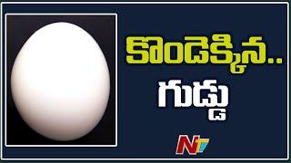 Eggs Price Hike As Demand Rises Due To Corona   NTV