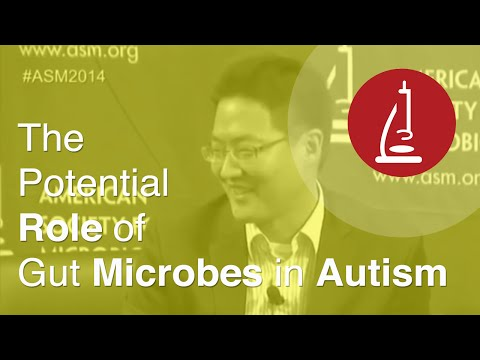The Potential Role of Gut Microbes in Autism