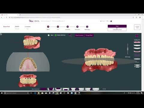 Teeth Setup Tutorial