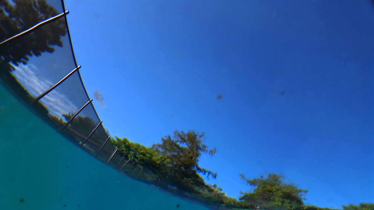 Waterproof Lifeproof Fre Case For Samsung Galaxy S6 Swim Pool Test