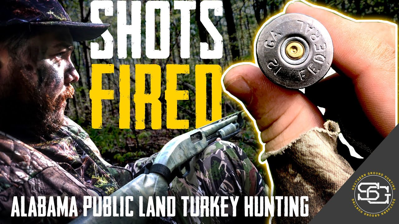 SHOTS FIRED! | Big GOBBLER Comes In Quick! | Alabama Public Land Turkey Hunting