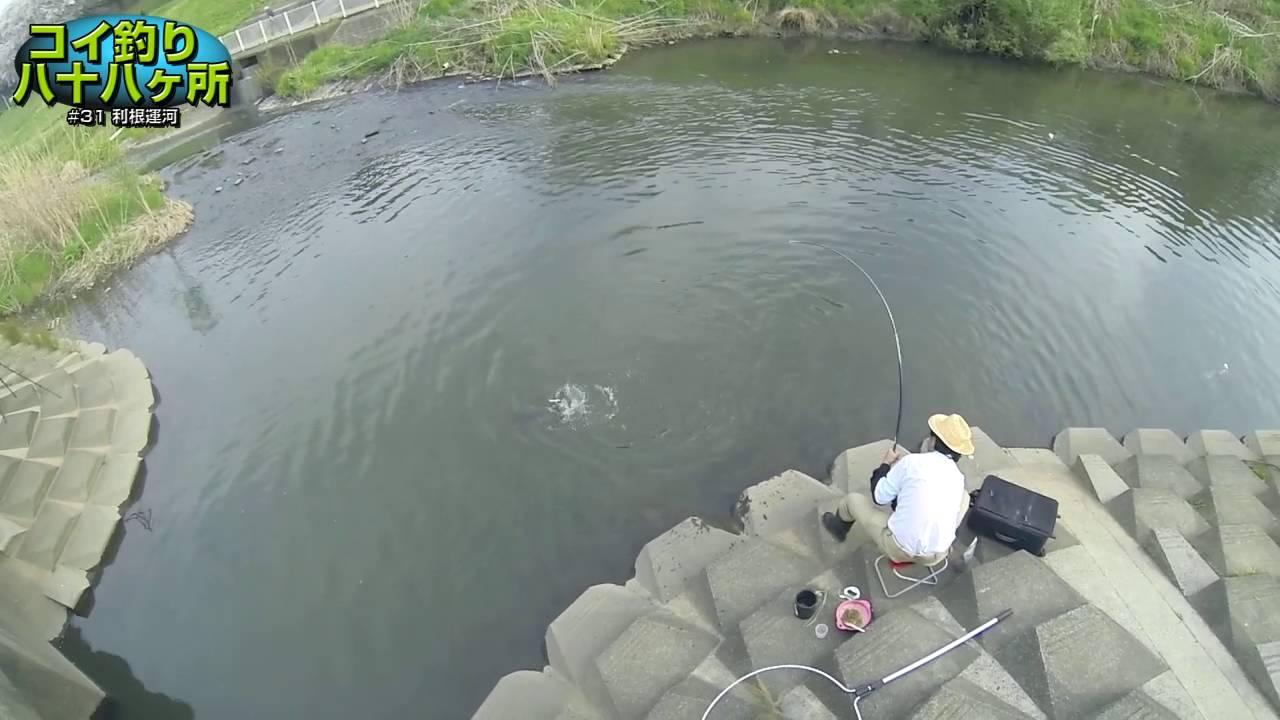 コイ釣り八十八ヶ所 #31:千葉県・利根運河 - YouTube