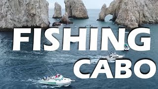Marlin Fishing in Cabo and Whales! - Sailing Doodles Episode 67