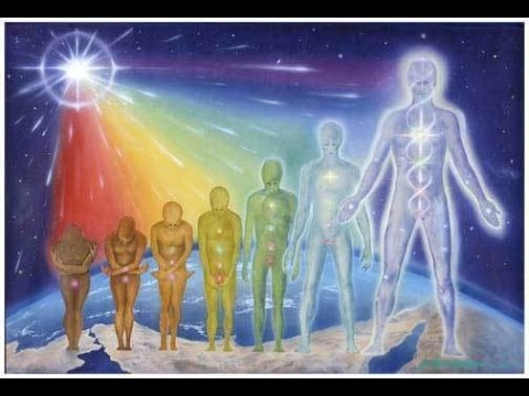 Consciousness and the 7 Root Races