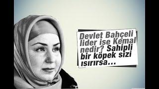 Mehtap Yılmaz    Devlet Bahçeli lider ise Kemal nedir   Sahipli bir köpek sizi ısırırsa…