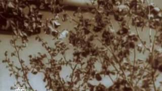 Алтарь Победы. 8 с. Горячий снег Сталинграда 1