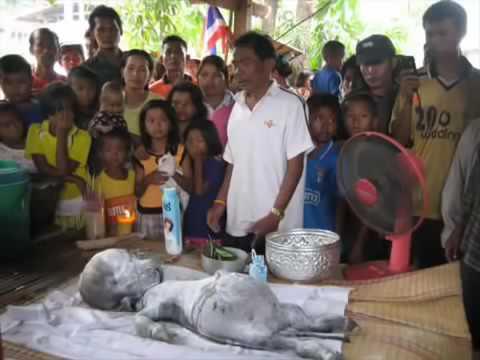 tin tuc moi 24h Pháp luật tin tức Kinh Hãi Trâu Đẻ Ra Người Ở Thái Lan
