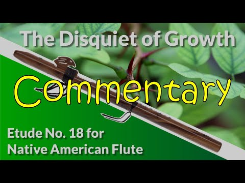 Native American Flute Etude No. 18 - The Disquiet of Growth - Full Commentary