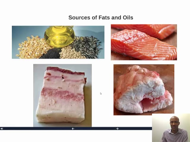 Fats, Oils and Related Products