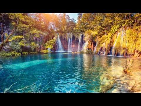 Música Instrumental de Fondo para Relajarse | Musica para Calmar la Mente y Eliminar el Estres