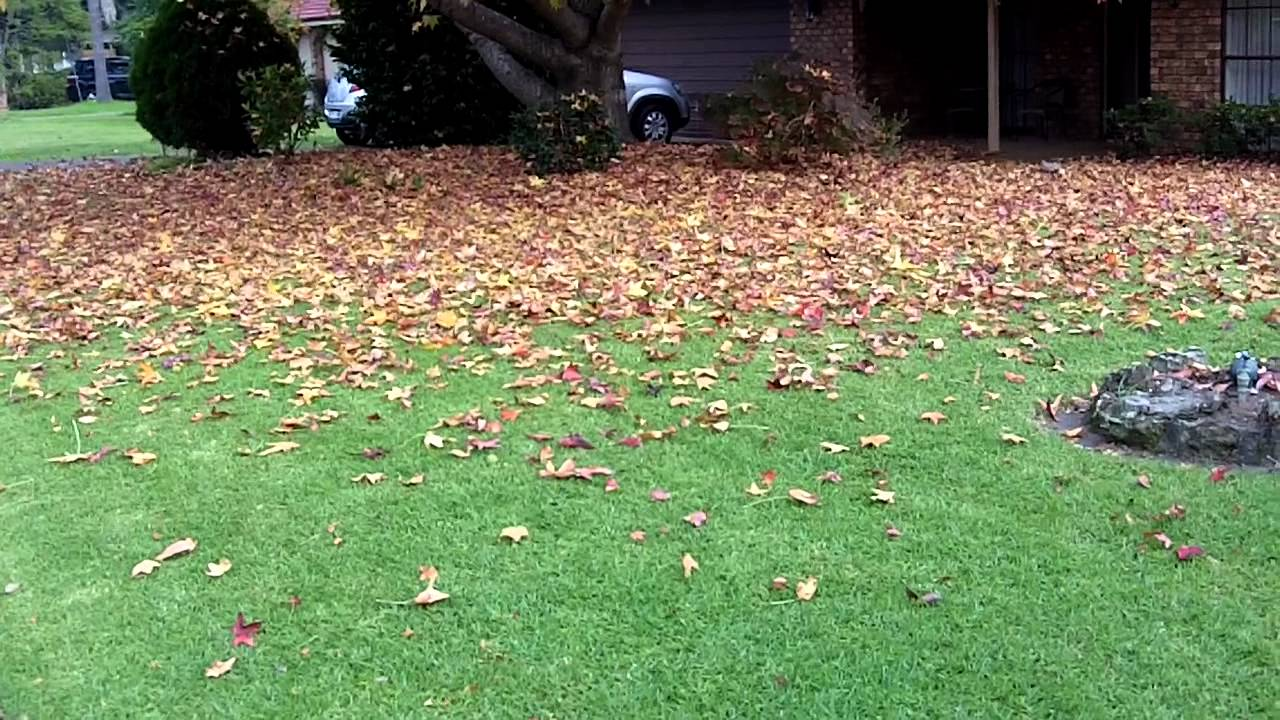 lawnmowing sydney - photo#4