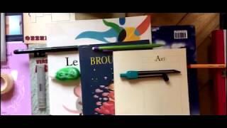 """04 - """"Une belle Histoire"""" de Michel Fugain - Les (pas tant) Petits Caraoquets (à la maison)"""